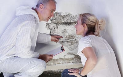 The Top Signs You Have a Mold Problem
